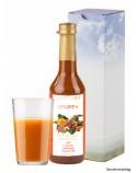 VITAFIT PLUS 350 ml Glasflasche